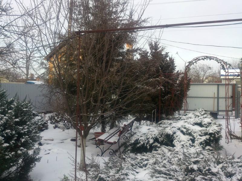 снег-096.jpg