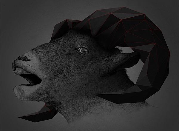 Trigonal Meshes & Animals - Kaan Bagci