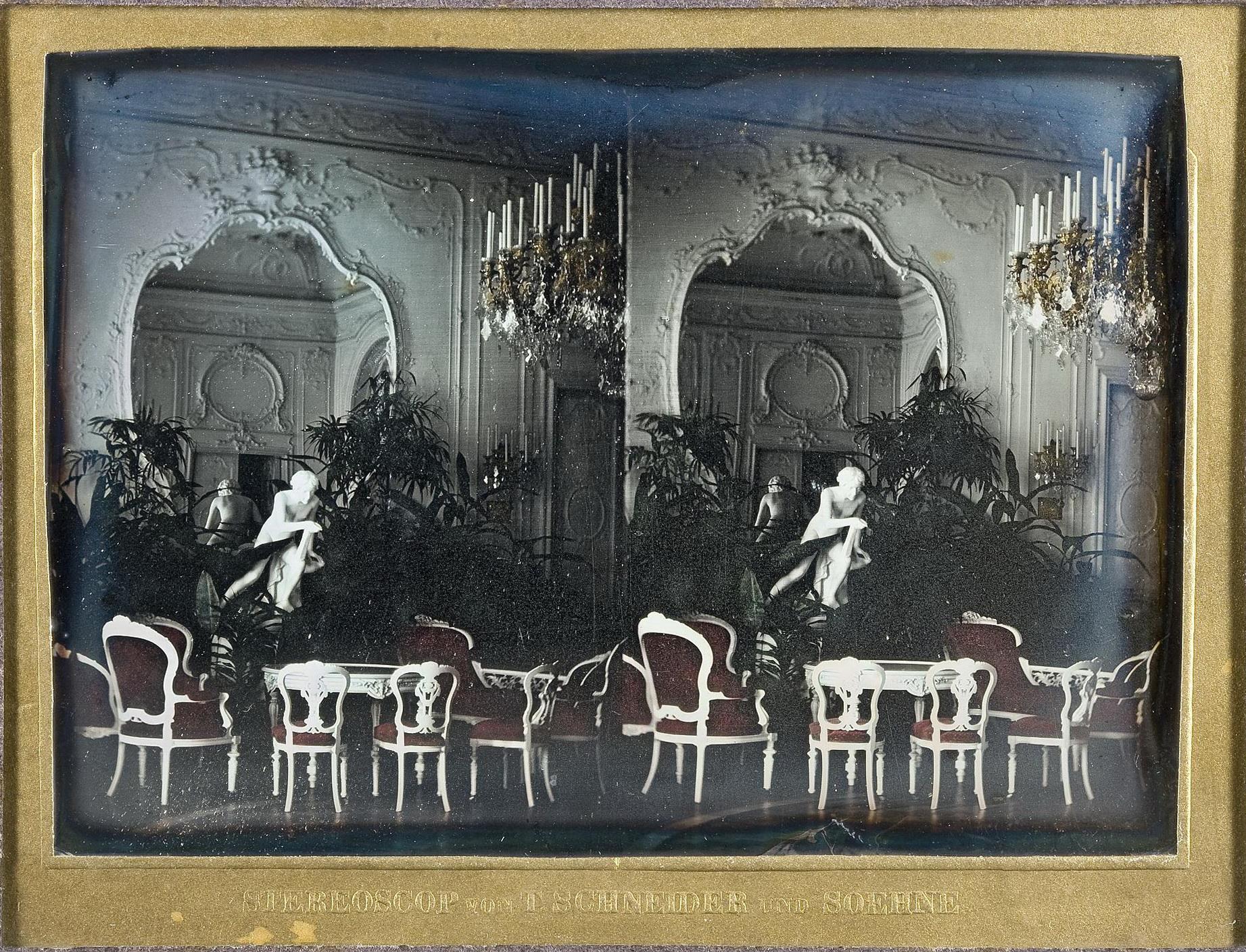 Интерьер зала в усадьбе Михайловка. 1861