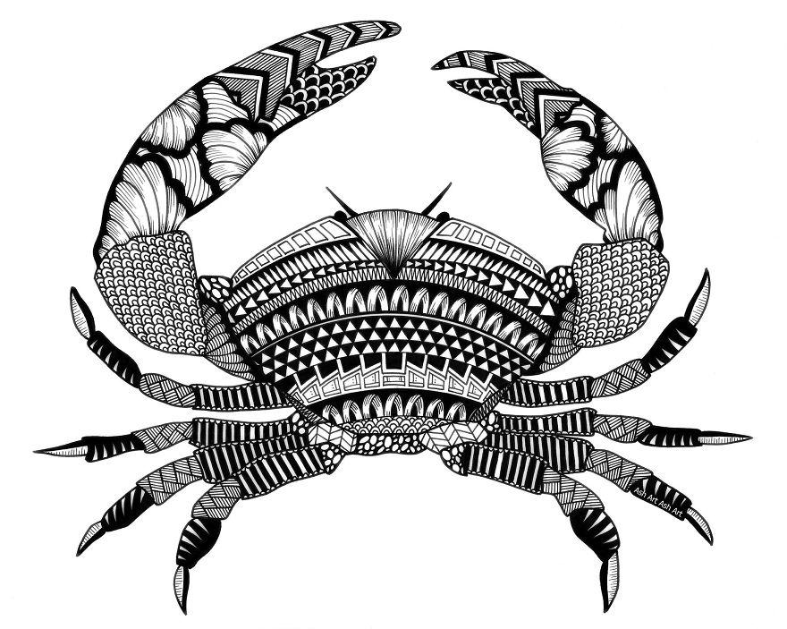 Ashley-Adam-Crab-59caabdd7e9ce__880.jpg