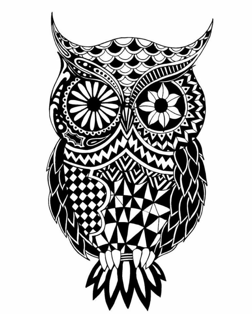 Ashley-Adam-Owl-59caac14c99ef__880.jpg
