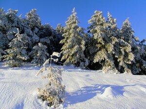 Зима на Змеевых горах.