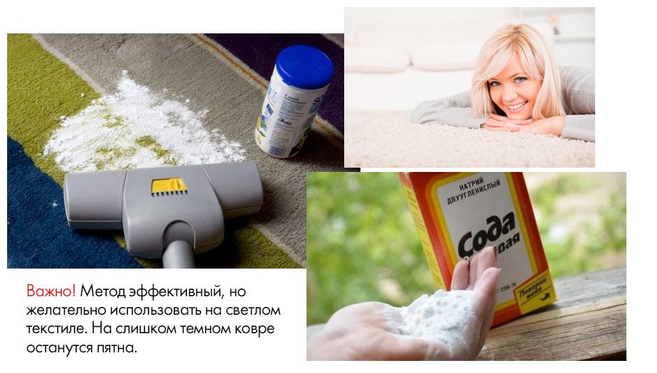 как убрать запах мочи кошки с помощью пылесоса и пищевой соды