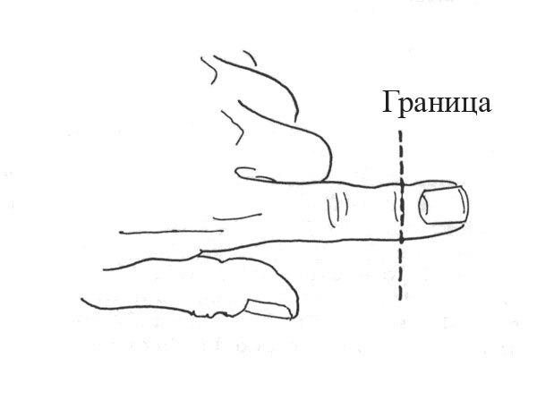 Регенерация кончиков пальцев у людей