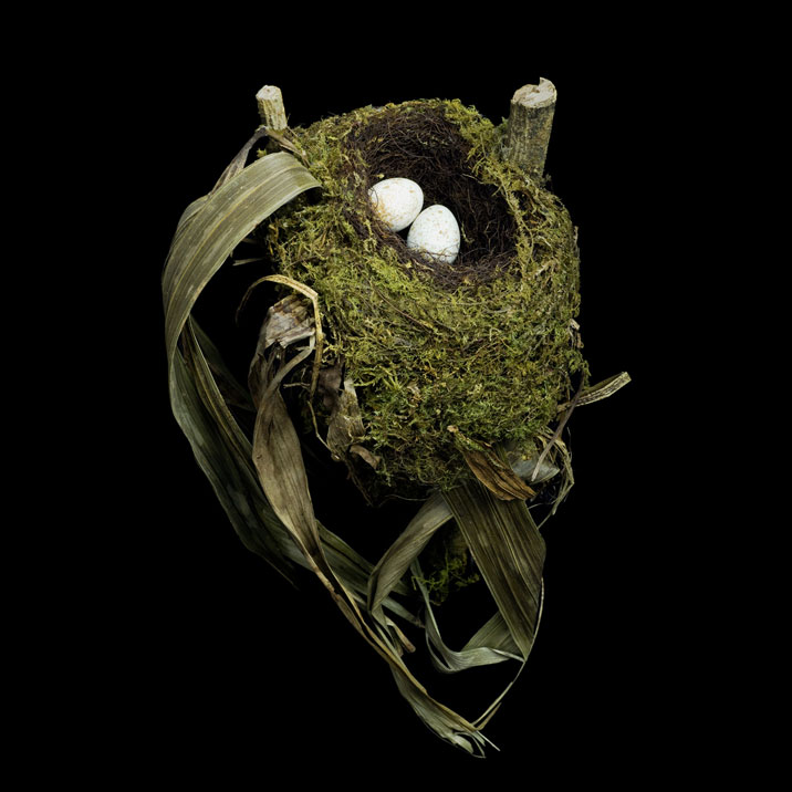 Sharon Beals 20th Century Birds Nest