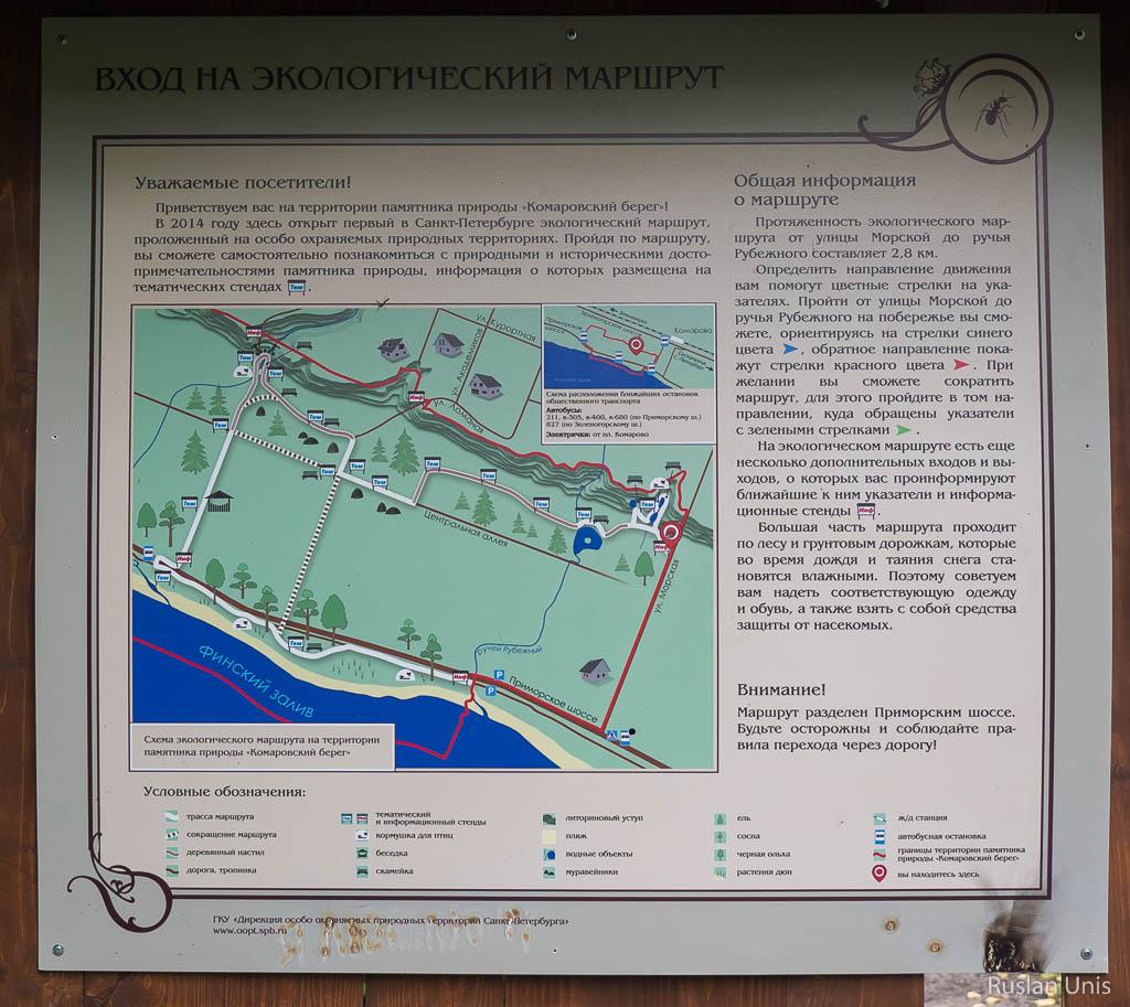 Экологическая тропа Комарово