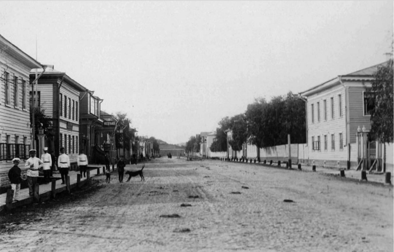 Псковский проспект, от улицы Поморской в сторону Соборной