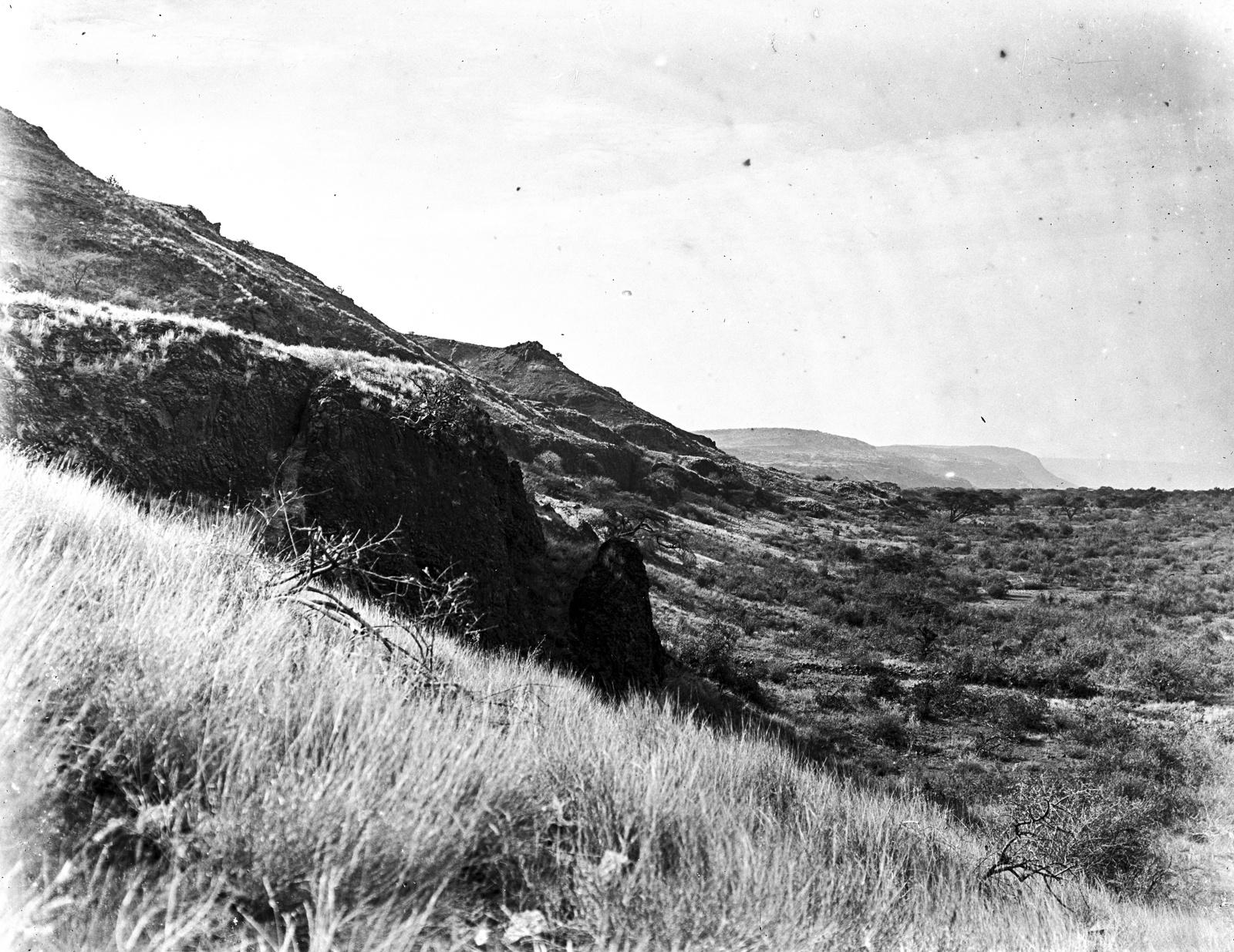 47. Скалистый склон, заросший кустарниками и травами. Вероятно, часть кратера Нгоронгоро