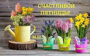 https://img-fotki.yandex.ru/get/752268/131884990.ea/0_15fb8e_61e3be3c_M.jpg