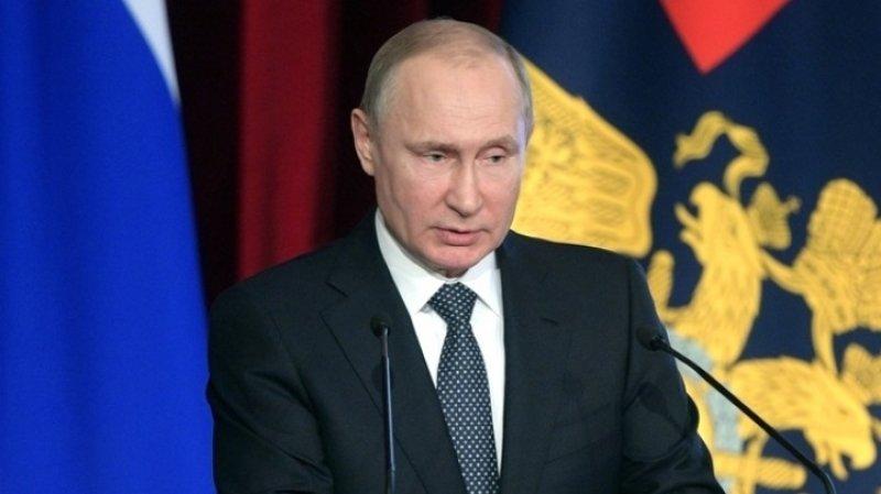 Путин подписал закон одрессировке собак