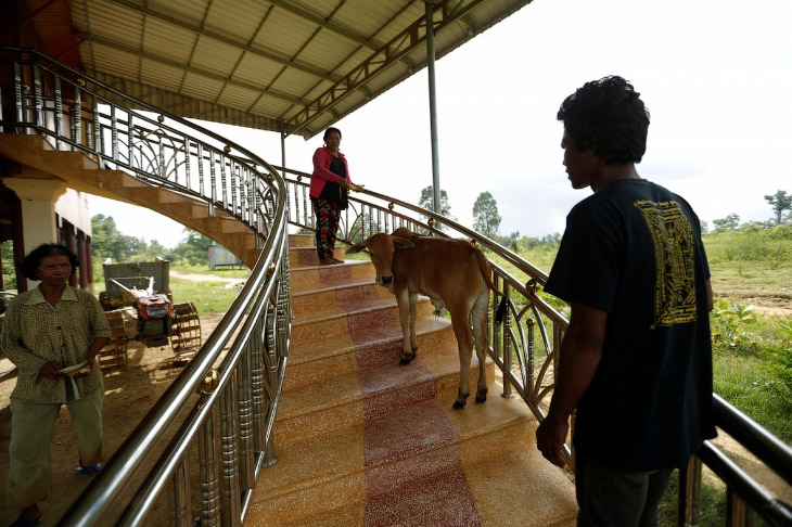 Реинкарнация в Камбодже