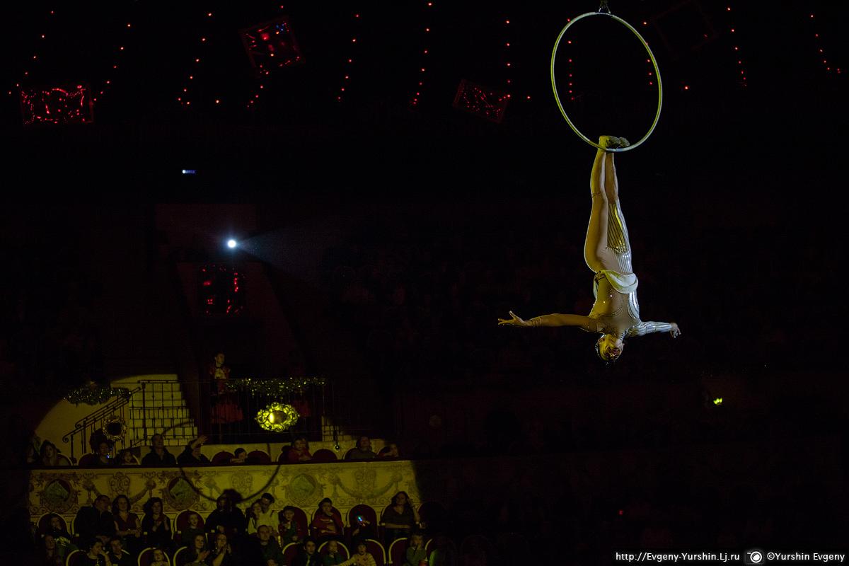 Цирк. Королевство волшебных зеркал