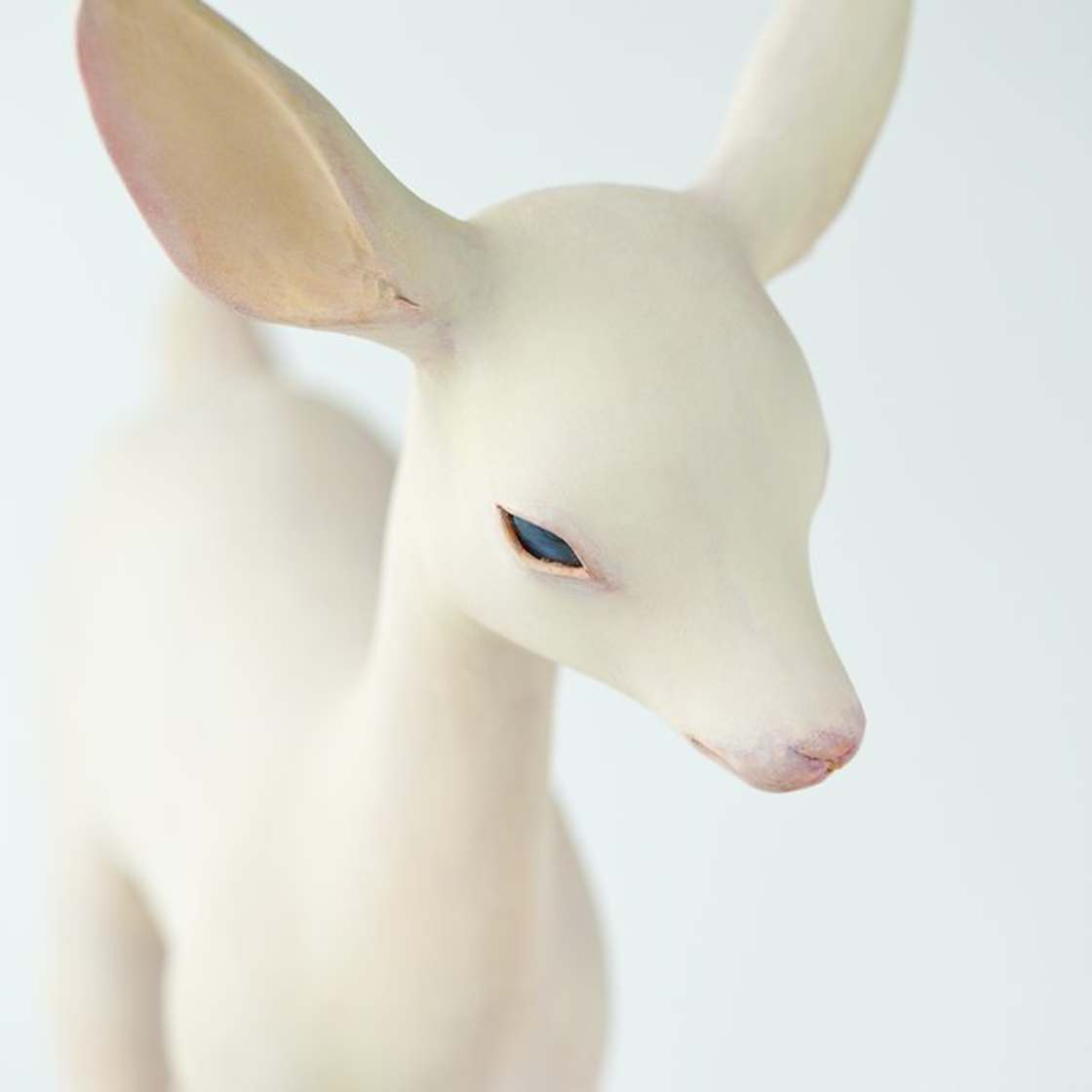 This Japanese sculptor creates delicate wooden animals (22 pics)