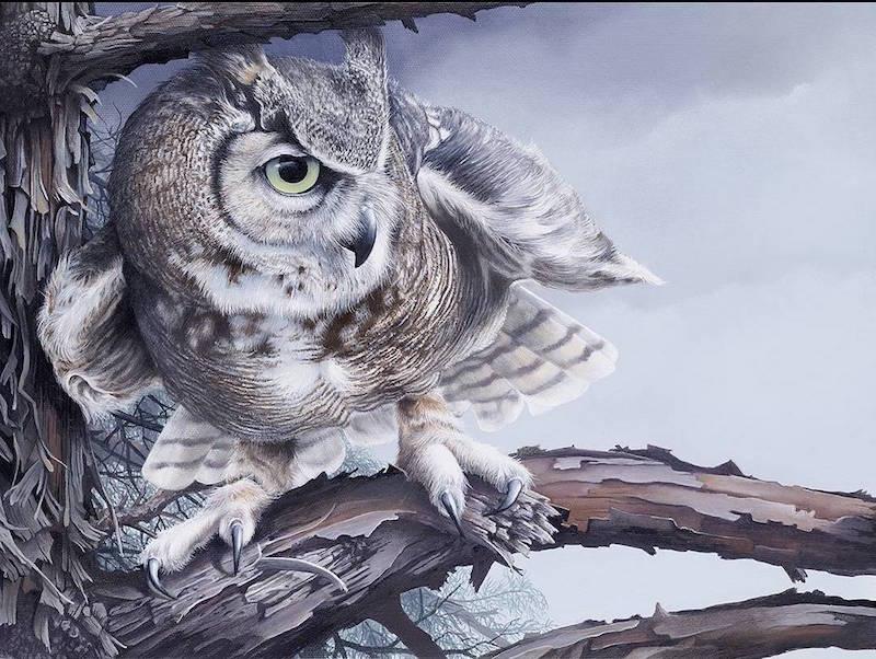Oregon Birds Exquisitely Captured in Wildlife Art Paintings by Tom Mital (20 pics)