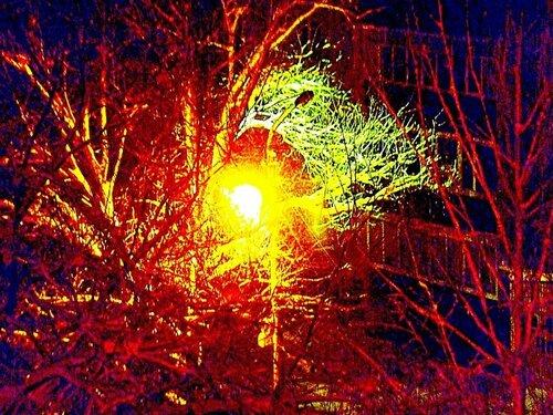 Фейерверк во дворе похож на восход солнца