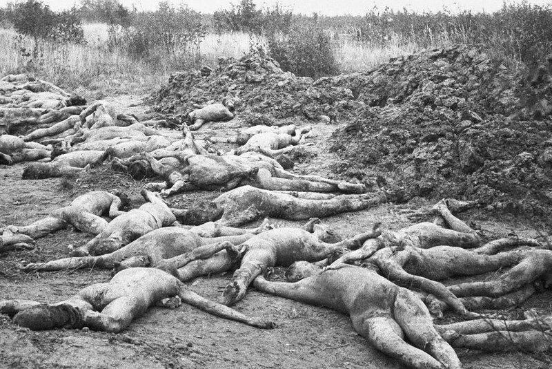 «Правда», 15 апреля 1943 года, зверства фашистов