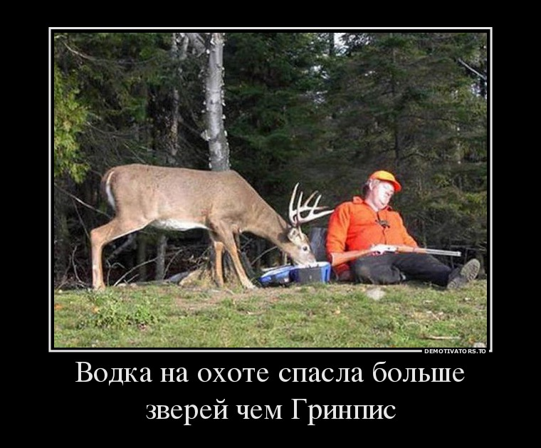 57531643_vodka-na-ohote-spasla-bolshe-zverej-chem-grinpis.jpg