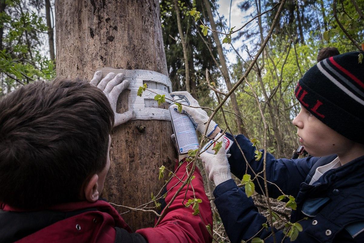 Кто и зачем уводит детей в лес?