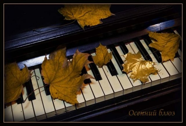 С днем музыки. Осенний блюз открытки фото рисунки картинки поздравления