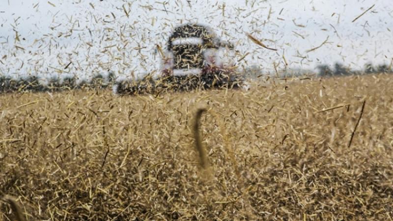 Путин поручил подумать над последствиями высокого урожая в 2017 году