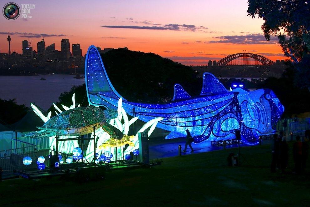 Скульптуры Зоопарка Таронга, изображающие находящихся под угрозой исчезновения животных: австралийск