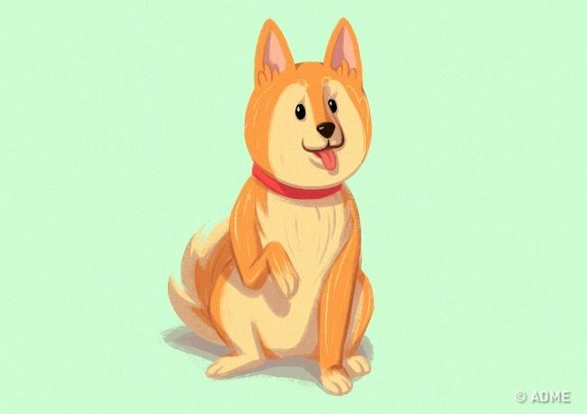 Принимая такую позу, пес выражает какую-либо просьбу. Возможно, онголоден или хочет поиграть. Иногд
