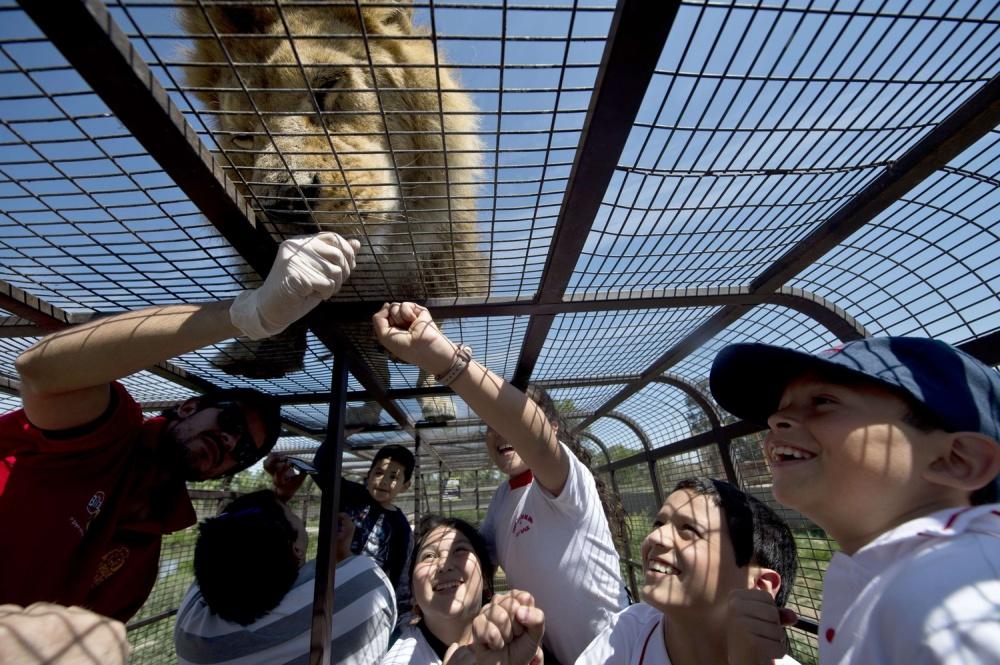 © AFP PHOTO/MARTIN BERNETTI/EAST NEWS