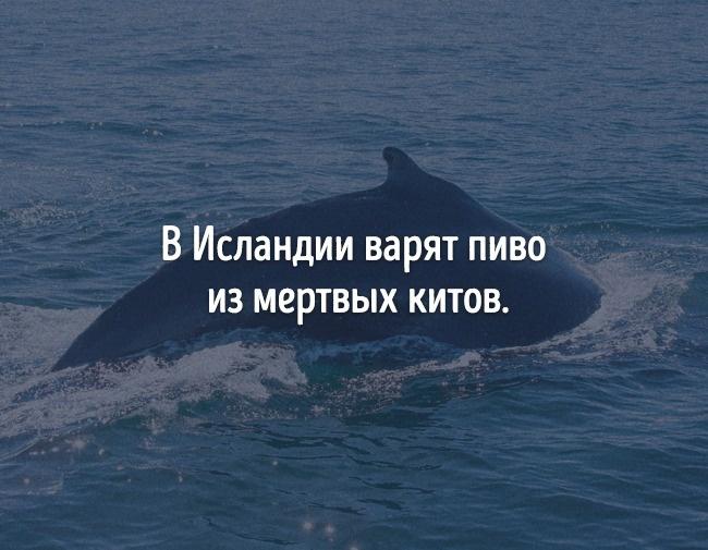 © depositphotos      Подтверждение