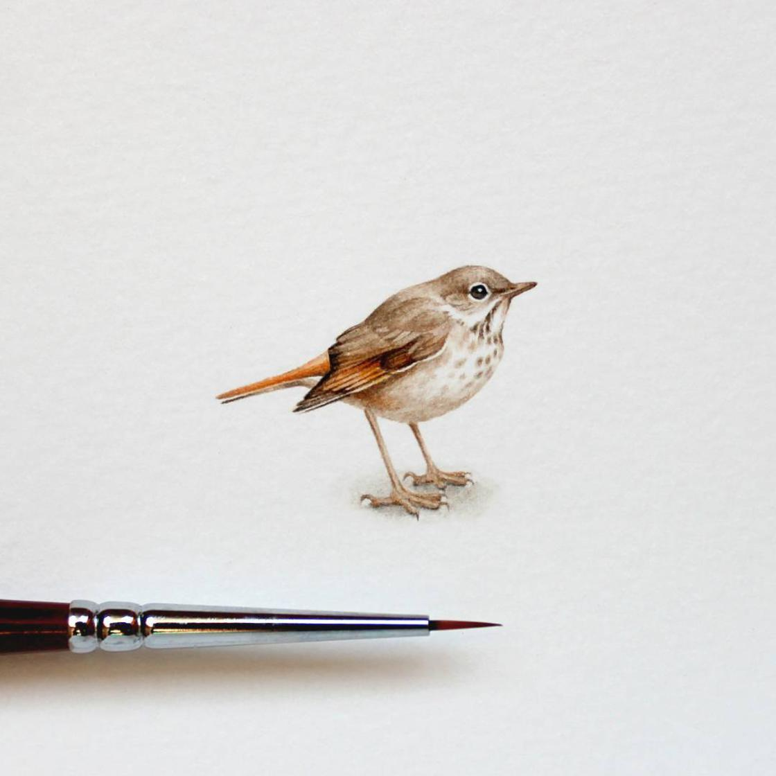The miniature paintings of Julia Las