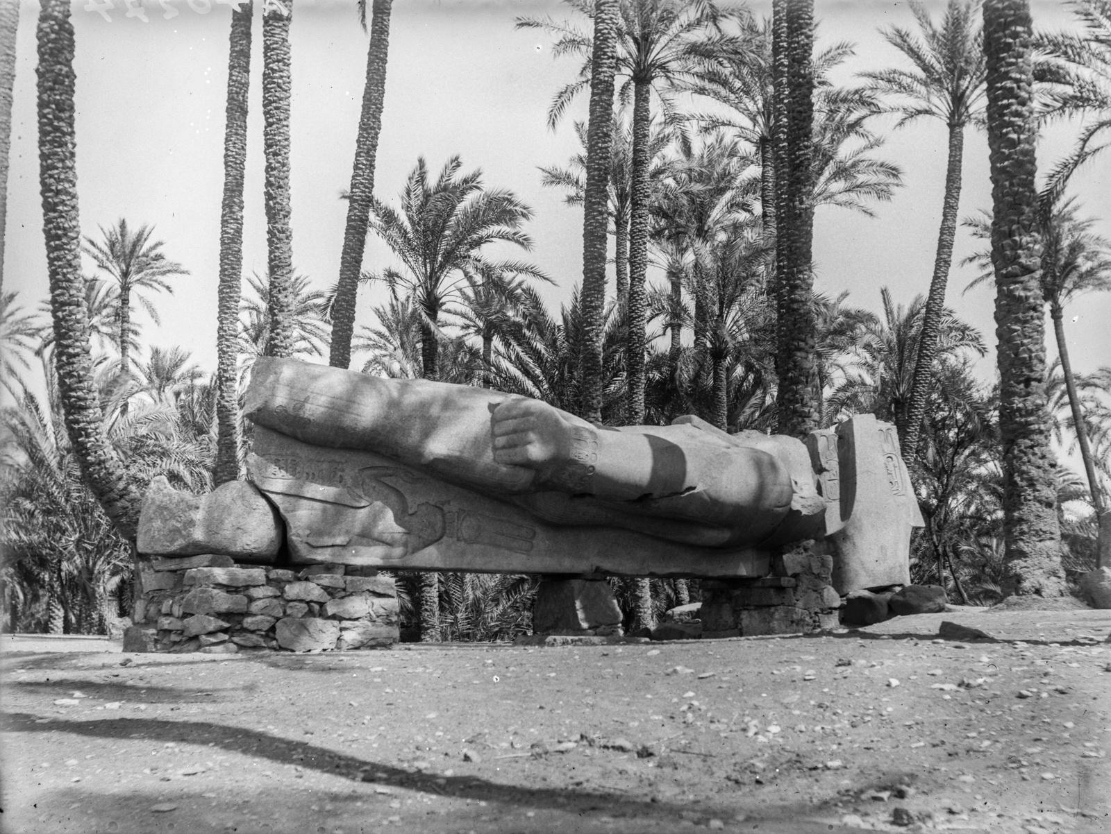 Мемфис. Статуя Рамзеса II покоится на камнях под пальмами