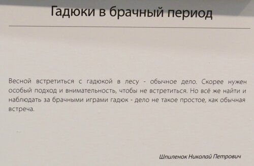 https://img-fotki.yandex.ru/get/759574/140132613.6c1/0_243d76_fe727832_L.jpg