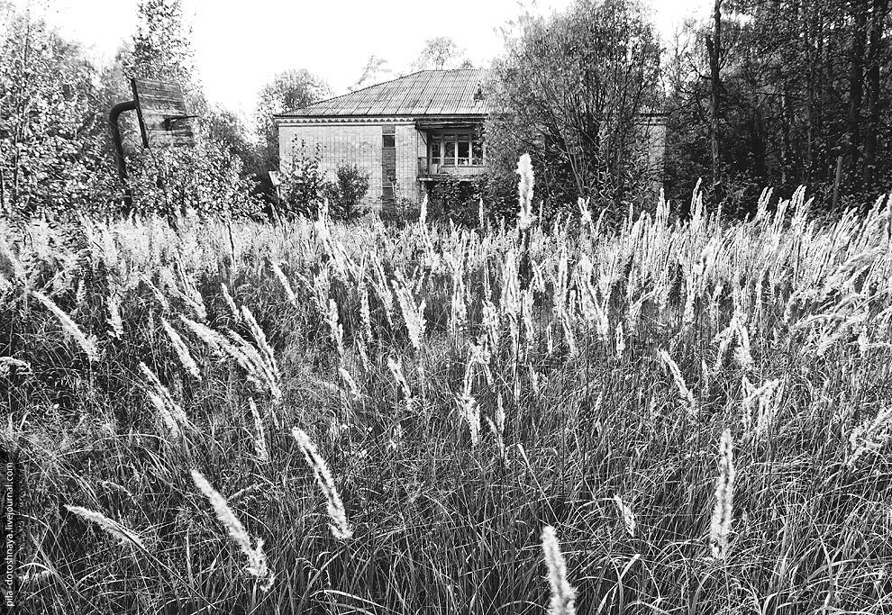 10. После Артека, начали открываться другие летние лагеря по всей территории Советского Союза.