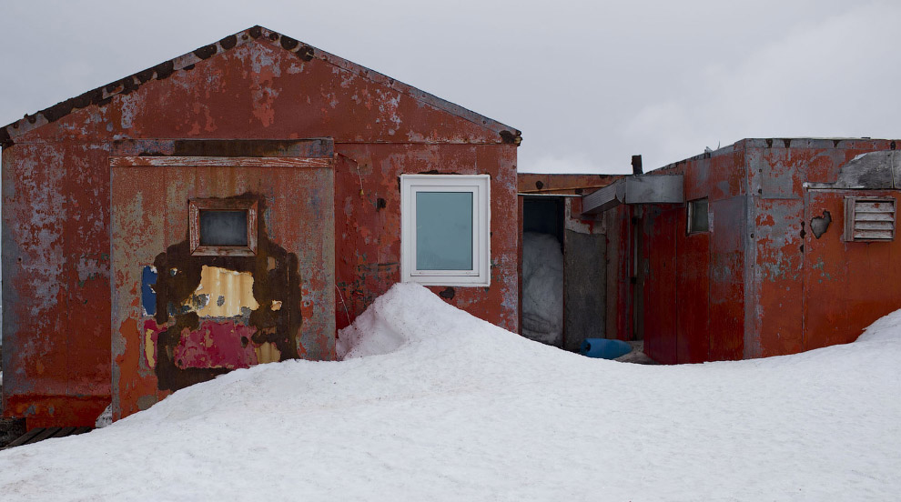 8. Ученые на острове Десе?пшен, который входит в архипелаг Южных Шетландских островов, 24 январ