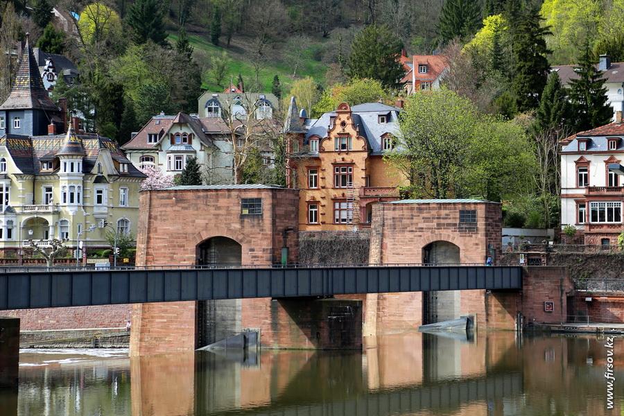 Heidelberg_20136_zps20fc41c3.JPG