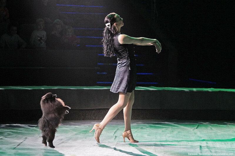 Цирк Дарьи Костюк. Вегас. 15.10.17.49..jpg