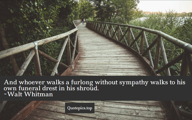 And whoever walks a furlong without sympathy walks to his own funeral drest in his shroud. ~Walt Whitman