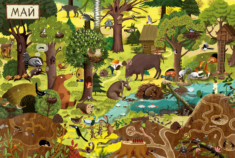 Картинка найди всех зверей