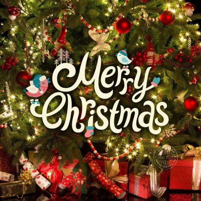 Kostenlose Bilder Frohe Weihnachten.Grüße Frohe Weihnachten Live Karten Für Jeden Urlaub