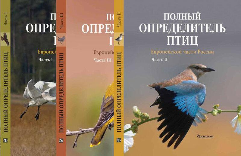 https://img-fotki.yandex.ru/get/762837/140132613.6a5/0_240966_a250cdc7_XL.jpg