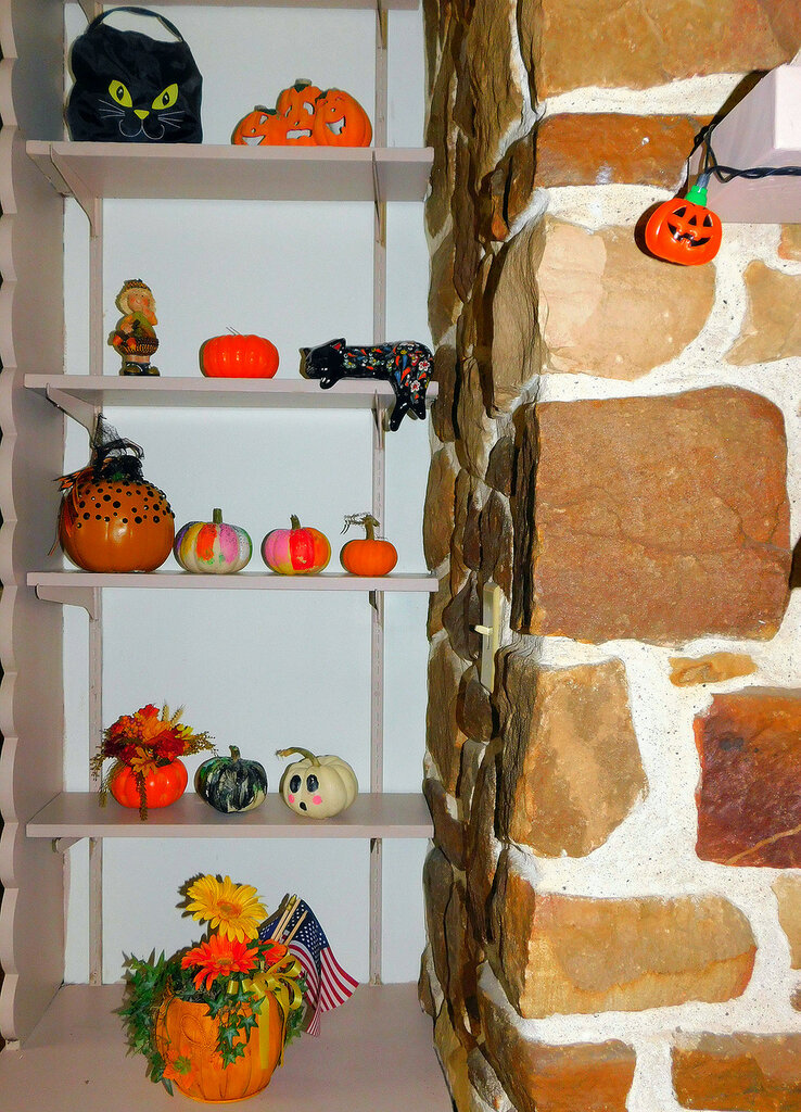 Титан и Элвис отмечают Хэллоуин