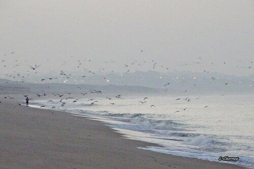 Утро туманное, утро седое