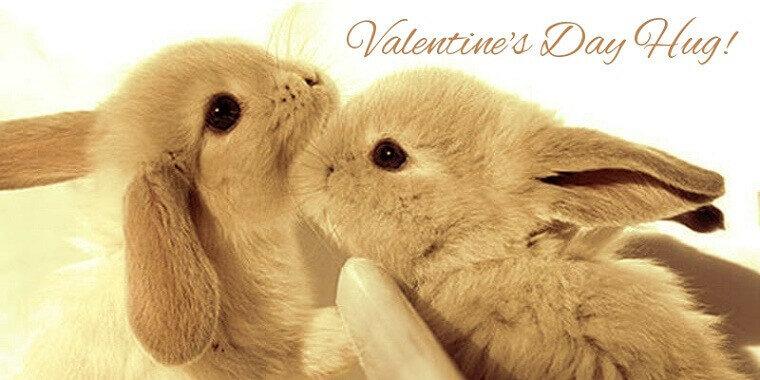 Neue Grusskarten Des Jahres 2019 Mit Valentinstag