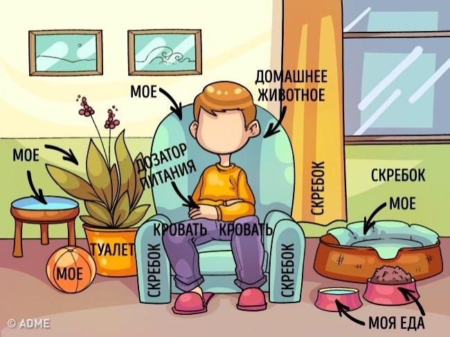 Иллюстратор Yekaterina Ragozina  специально для  AdMe.ru