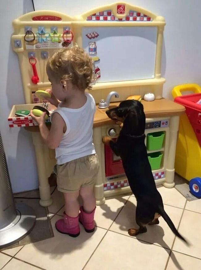 Вашему ребёнку непременно нужен домашний питомец