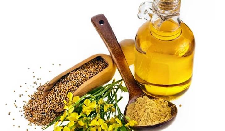 Льняное масло  Лен – одна из самых старых сельскохозяйственных культур. Египтя