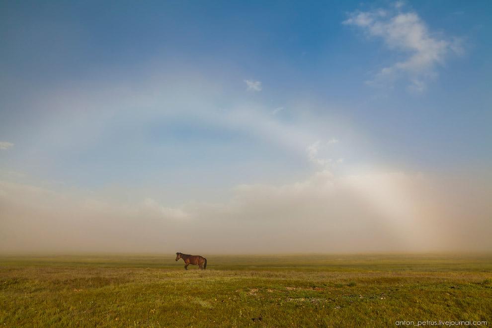 5. Туман — это, наверное, моё любимое состояние природы, я готов его часами снимать. Смотреть, как в