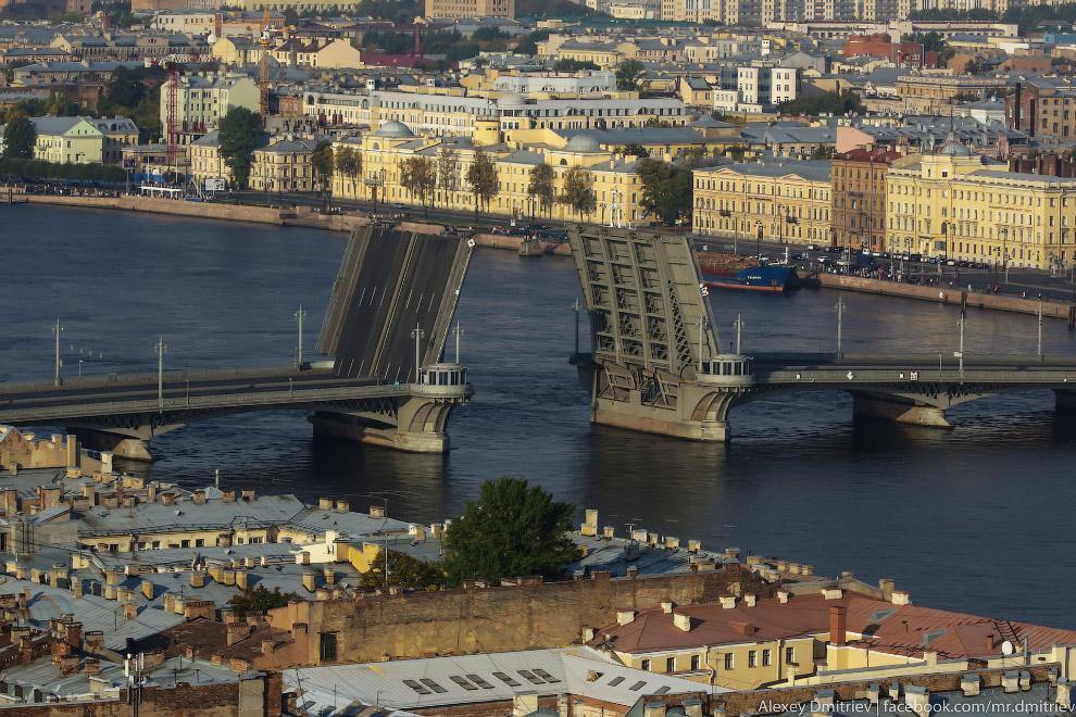 10. Дворцовый мост находится в выигрышном положении — вокруг него и Эрмитаж, и стрелка с Ростральным