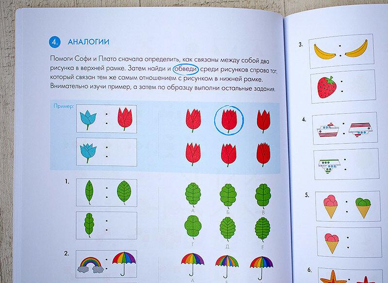 думай-чудесные-сечения-алиса-в-стране-наук-отзыв-книги5.jpg