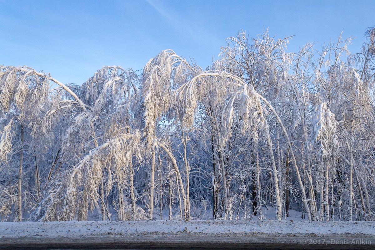 дорога зима хвалынск фото 3