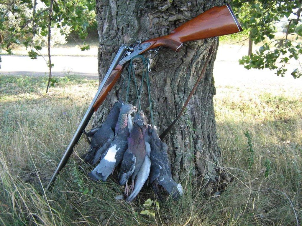 Техники охоты